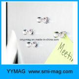 Perni magnetici di colore del neodimio da vendere