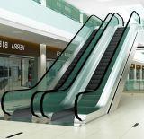 800mm высокого качества Ширина эскалатор