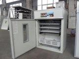 Incubateur automatique d'oeuf de caille de qualité