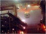 ひしゃくの転送の鋳造の天井クレーン