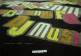 手房状の領域敷物のロゴのカーペット