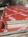 A folhosa do Poplar de China WBP verde/preto/película Phenolic vermelha de Brown enfrentou a madeira compensada