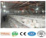 Система оборудования клетки птицефермы бройлера (тип рамка)