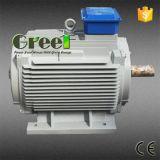 AC Brushless Fase 3 15kw 100rpm Permanente Synchrone Generator van de Magneet