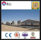 Chinses 고품질 빛 물결 모양 강철판과 섬유 유리 절연제 벽 (XGZ-306)를 가진 강철 닭장