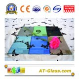 4mm 5 mm de vidro float colorido/matiz de vidro/vidro escurecido/vidro float