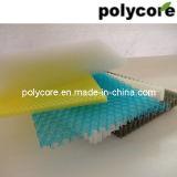 プラスチック蜜蜂の巣シート