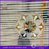 Panneau de mur décoratif d'acier inoxydable de fournisseur de la Chine de Foshan