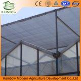 100% de Vidrio Transparente Que Cubre el Invernadero Precio Considerable
