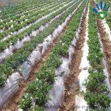 De in het groot Geweven Stof van het Polypropyleen van het Fruit van de Installatie van de Landbouw Niet-geweven Behandelende niet