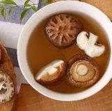 Fleur de thé séché comestibles la culture des champignons en automne