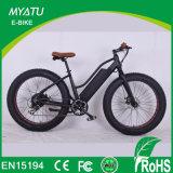 Fat Pedal de neumático ayudar a Motorized Beach Cruiser Electric nieve grasa bicicleta con luz de freno