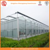 Hot-DIP Galvanizado Hoja de PC Green Houses For Vegetables / Flowers