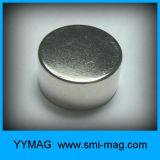 Allerlei De Magneet NdFeB van de Zeldzame aarde van de Schijf van Magneten