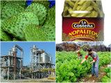 杏子、パイナップル、Wolfberryのための自動化されたフルーツの生産工場