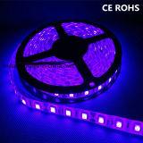 休日の装飾のための5054 60 LEDs/M LEDのストリップ