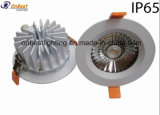 Venta caliente Luz Sumergible IP65 20W Downlight LED