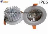 IP65 de vente chauds imperméabilisent en bas de la lumière 20W DEL Downlight