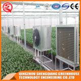 농업 Prefabricated 정원 유리제 녹색 집