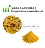 Extrato 95%Curcumin da raiz de Turmeric para alimentos e suplemento