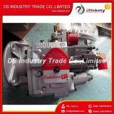 Pompa Nt855 di iniezione di carburante di Cummins per Nt855-C280 Nt855-C360 3075524