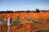 maglia arancione di sicurezza stradale 1*50yard
