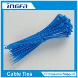 Ataduras de cables de autoretención del vario color del nilón 66 para el manojo 2.5X100