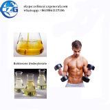 Olio iniettabile Boldenone Undecylenate/Equipoise/EQ 200mg degli steroidi