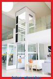 De Lift/de Lift van het Huis van de Ets van de Spiegel van het roestvrij staal