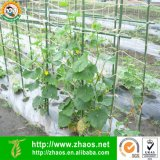 100% natürliches biodegradierbares Pflanzenstützjutefaser-Netz