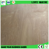 Birch Plywood D/E Grade E2 Glue Type II Packging Grade
