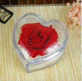 Caja de embalaje de acrílico de la flor fresca de la dimensión de una variable del corazón del conjunto superior del regalo