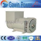 Yw274 Series бесщеточный генератор переменного тока используется на всех Occassions с одинарной или двойной подшипник