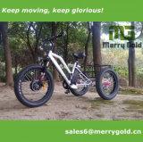 Ultimo triciclo elettrico di vendita caldo della gomma grassa per l'europeo