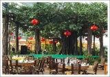 Piante di alta qualità e fiori artificiali del giardino verticale Gu45286869