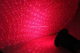 Lasers ao ar livre verdes vermelhos impermeáveis do jardim do Natal para a árvore