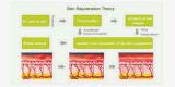 Портативное многофункциональное Shr выбирает машина подмолаживания кожи IPL Elight