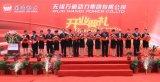 60 jaar Vervaardiging van de Pomp van de Vastgestelde in China