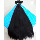 自然な毛の加工されていなく純粋なバージンのブラジルのFunmiの直毛