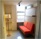 정면 소파를 가진 수직 기우는 침실 머피 벽 침대