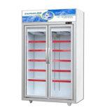 Congelatore verticale di raffreddamento dinamico del portello doppio