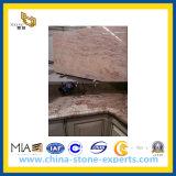 Plak van het Graniet van Shivakashi de Gouden en Countertop, de Bovenkant van de Ijdelheid