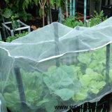 Fabricante de China contra agrícola de alimentación de red para atrapar insectos/sombra netas de gases de efecto