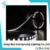 12V 24V SMD3528 RGB Flexible bande LED Light
