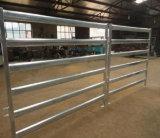 Comitato ovale dell'iarda del bestiame del tubo dell'Australia 6rails/comitato usato del bestiame