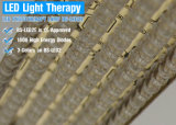 4 LED de cor da luz de fótons Rejuvenescimento da pele do Sistema de Terapia Fotodinâmica PDT