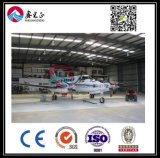 Fornitore esperto del gruppo di lavoro della struttura d'acciaio (BYSS006)
