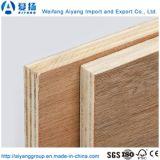 De Fabriek van China van de goede Kwaliteit van het Commerciële Triplex van 18mm