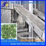 Secador do vegetal secado de máquina de secagem da cebola da mola