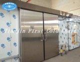 Nahrungsmittelspeicher-Kühlraum-einfrierender Meerestier-Kühlraum für gebildet in China